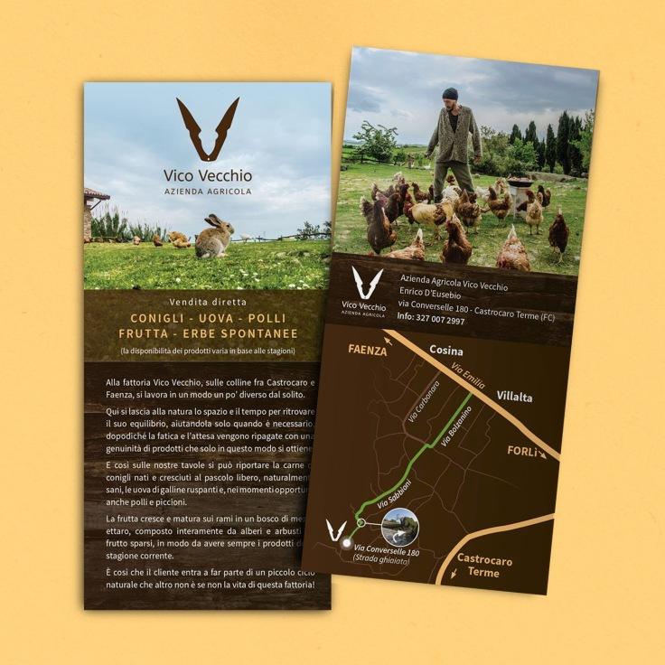 10x21 Vico V